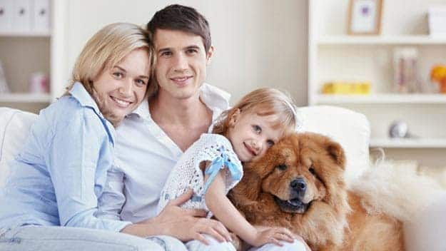 Wills & Trusts dog-young-family Direct Wills Lower Morden